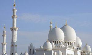 Переезд в Абу Даби