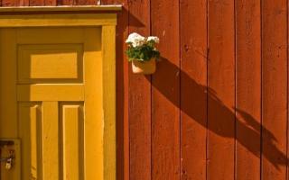 Жилье и образование в Норвегии
