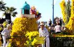Манделье-ла-Напуль фестиваль мимозы