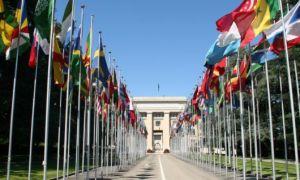 Работа в Женеве