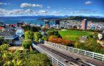 Какие зарплаты в Новой Зеландии?