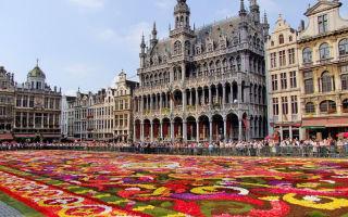 Какие зарплаты в Бельгии?